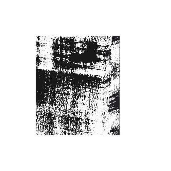 Nuuna exklusiv skrivbok anteckningsbok - STROKE